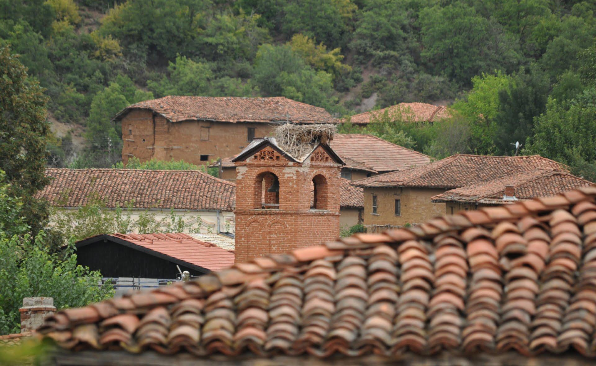 Село Мандрица
