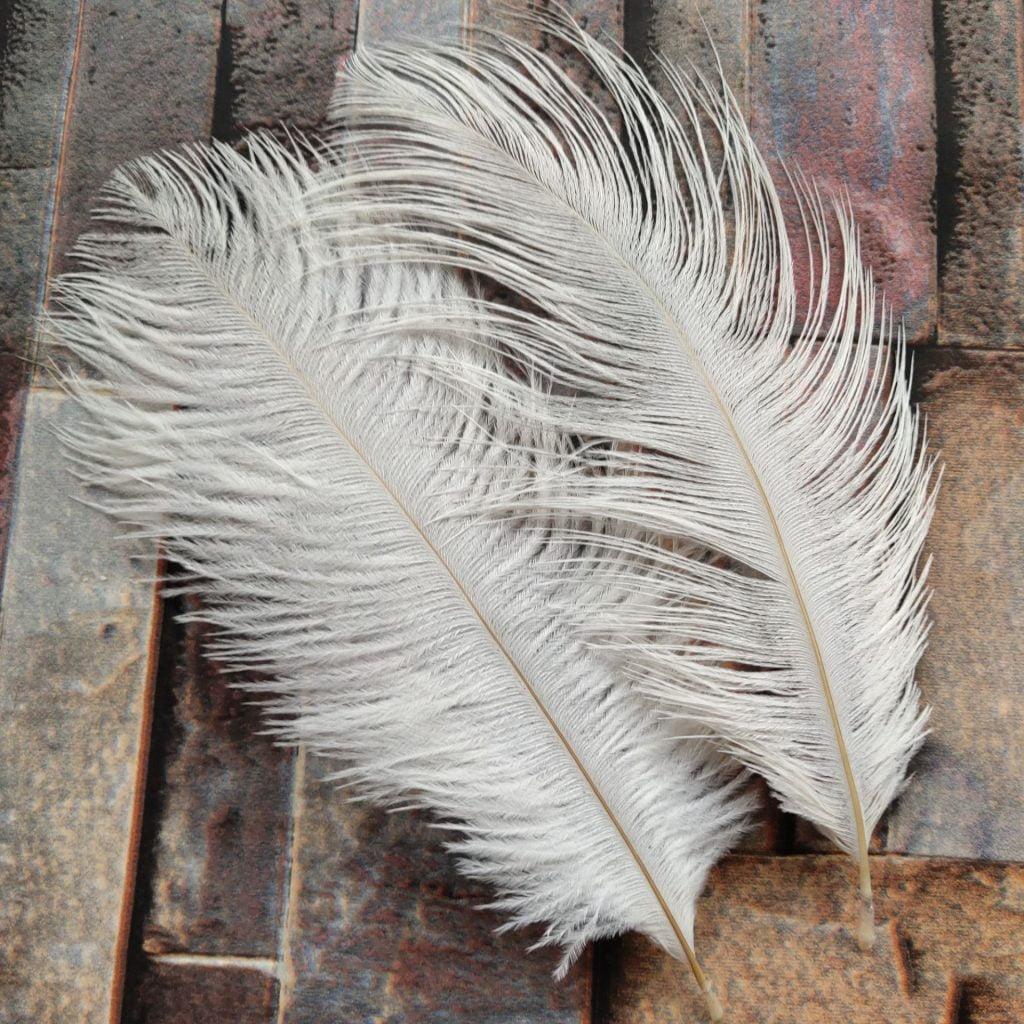 Щраусови пера