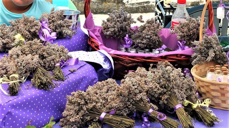 Национален Фестивал на лавандулата